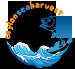 Ceylon Sea Harvest